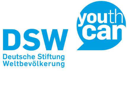 DSW Logo web